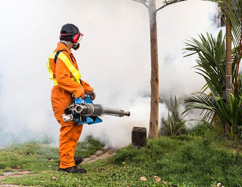 Fumigación en Costa Rica